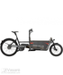 E-bike R&M Packster 60 vario Grey metalic Box